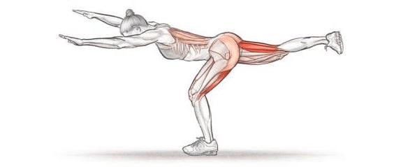 graphic of woman doing single-leg rdl